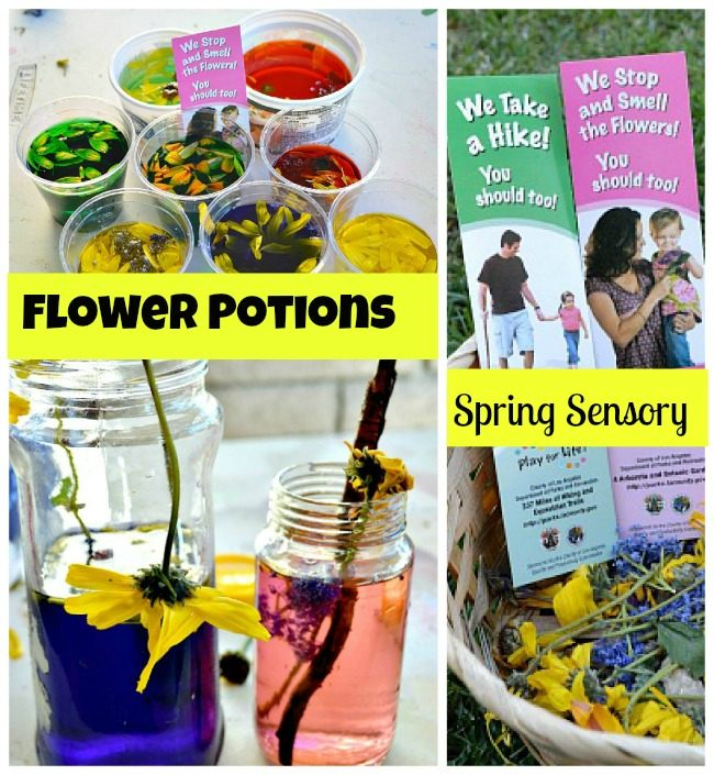 blog me mom flower potions