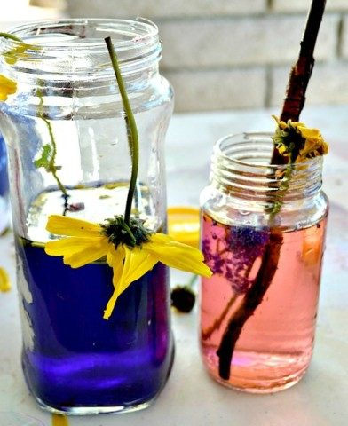 flower potions in bottles