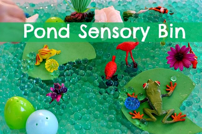 SENSORY ACTIVITIES WITH POND