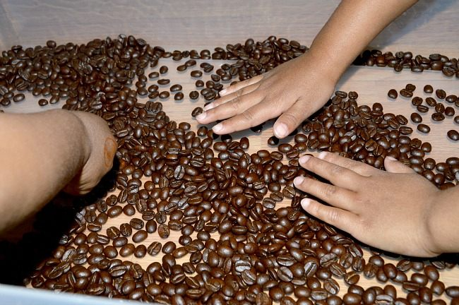 coffee beans sensory activities based on a spring
