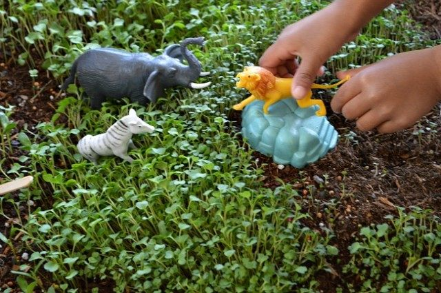 lion earth day activities play