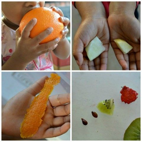 sensory activities with fruits
