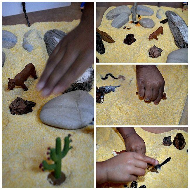 play with cornmeal