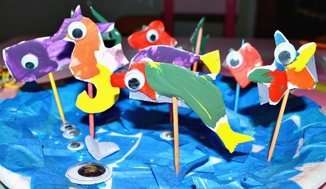 all ocean animals display