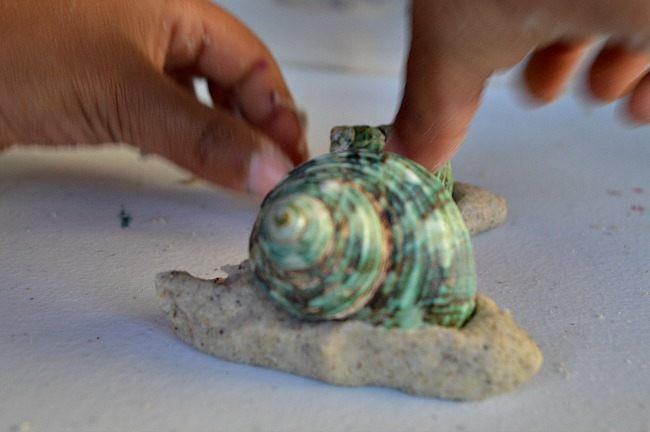 making a snail