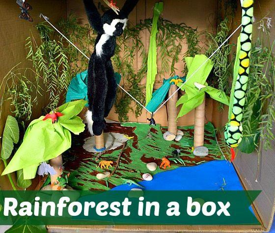 rainforest play scene