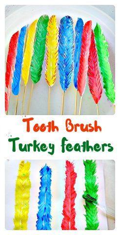 tooth-brush-turkey-feathers