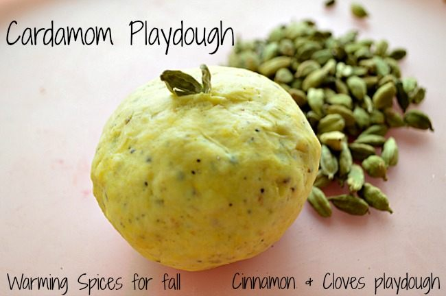 cardamom playdough_all