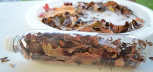 fall crafts using recycle materials