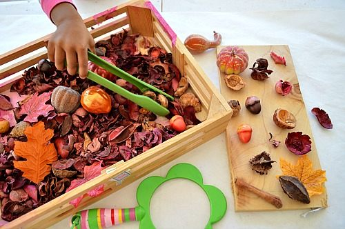 fall sensory bin with nature block