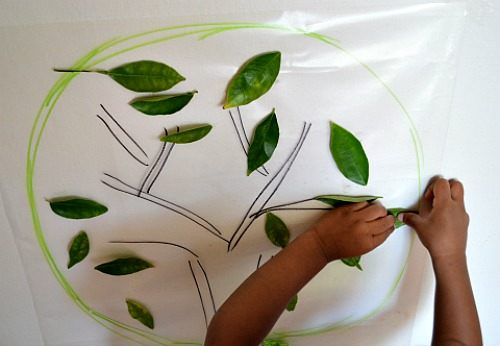 fun with apple tree - apple tree crafts