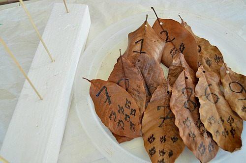 leaf activities materials