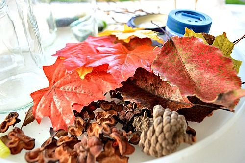 materials for fall discovery bottles