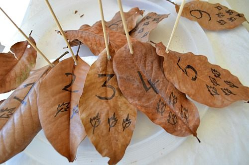 math fun with leaves