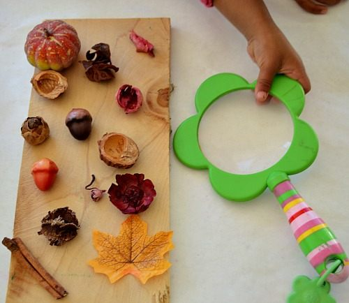 nature block sensory items