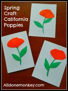 California-Poppies-5-223x300