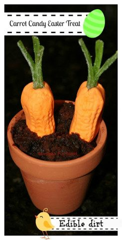 Flower pot carrot dirt dessert
