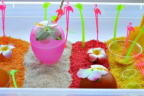 sensory rice with fruit rice