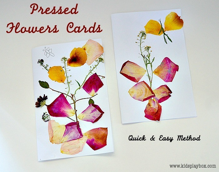 Valentine Cards with flower pressing
