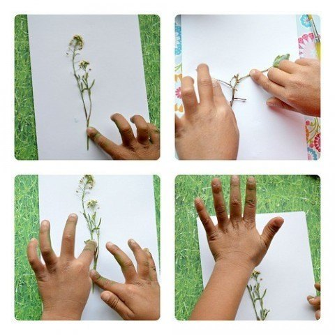 art activities for kids using pressed flowers